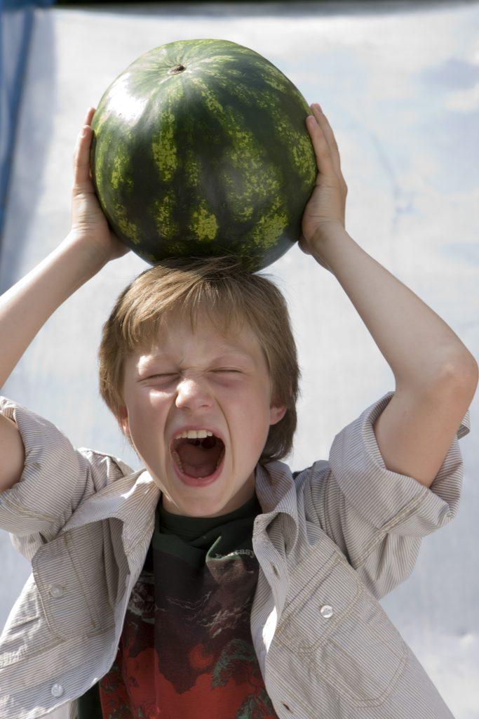 Schafft den Karneval ab und esst Obst statt Kamelle...