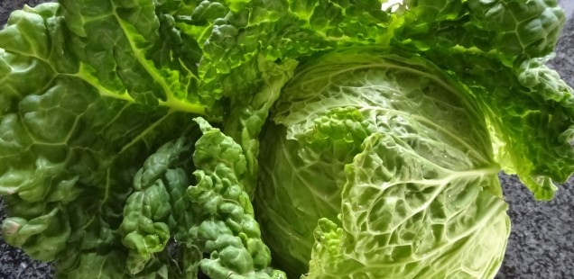 (Winter)gemüse lecker verpackt: Wirsingstrudel