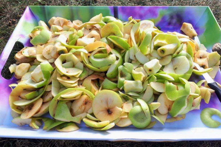 Apfelschalen von Falläpfeln