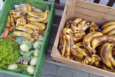 Kisten mit gerettetem Gemüse und Bananen